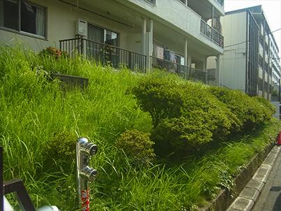 田園ハイツ藤ヶ丘の写真